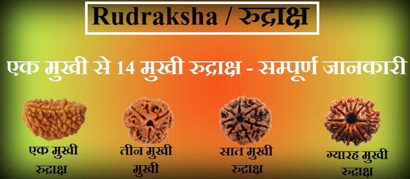 rudraksha dharan karne ki vidhi