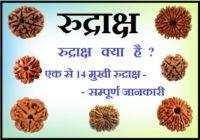 ek se 14 mukhi rudraksha banifits