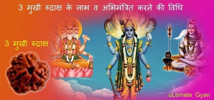 3 Mukhi Rudraksha Benefits in Hindi