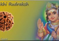 6 Mukhi Rudraksh Benefits in hindi