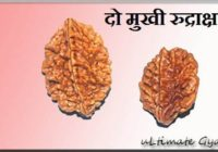 2 mukhi rudraksha benefits hindi